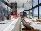 阿联酋迪拜迪拜的房产,迪拜棕榈岛,编号56623985
