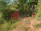 柬埔寨干丹Ta Khmau的土地,编号51884146