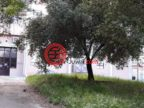 葡萄牙LisboaLisboa的房产,编号54509805