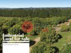 新西兰丰盛湾陶朗加的土地,39 wintrebre lane ,RD1  tauriko , Tauranga,编号9983654