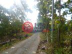 印尼巴厘岛丹帕沙的土地,编号48848597