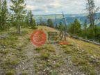 美国蒙大拿州大天空的土地,Old Toby Road,编号50681766