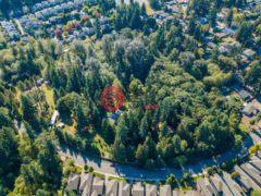 居外网在售美国柯克兰的房产总占地48402平方米USD 11,700,000