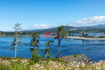 加拿大房产房价_不列颠哥伦比亚省房产房价_维多利亚房产房价_居外网在售加拿大维多利亚总占地1016平方米的土地