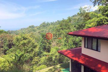 哥斯达黎加房产房价_Provincia de Puntarenas房产房价_Uvita房产房价_居外网在售哥斯达黎加的房产总占地12614平方米USD 159,000