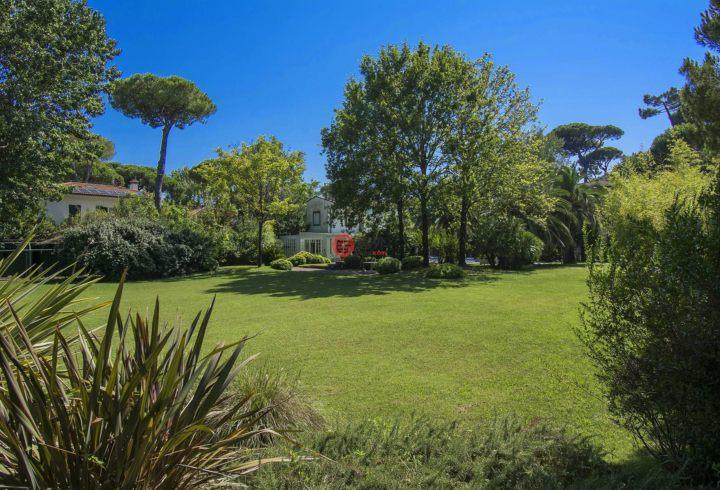 意大利LuccaForte dei Marmi的房产,Forte dei Marmi,编号55492254