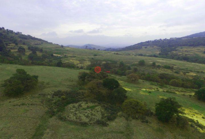 墨西哥QuerétaroAmealco de Bonfil的土地,编号32232279